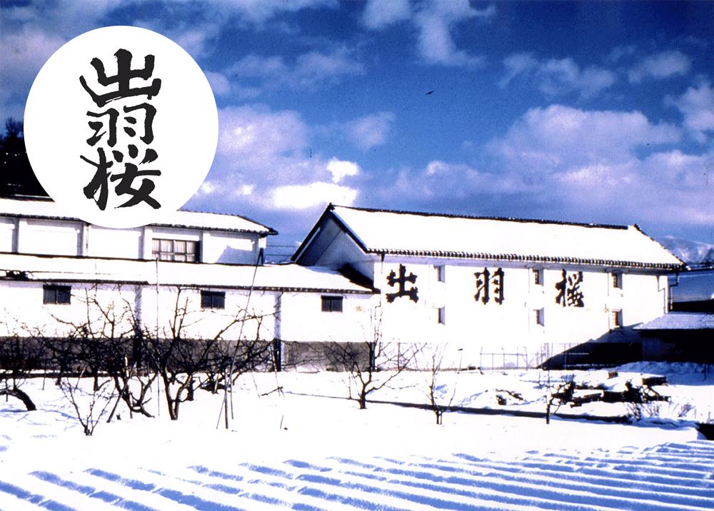 dewazakura01