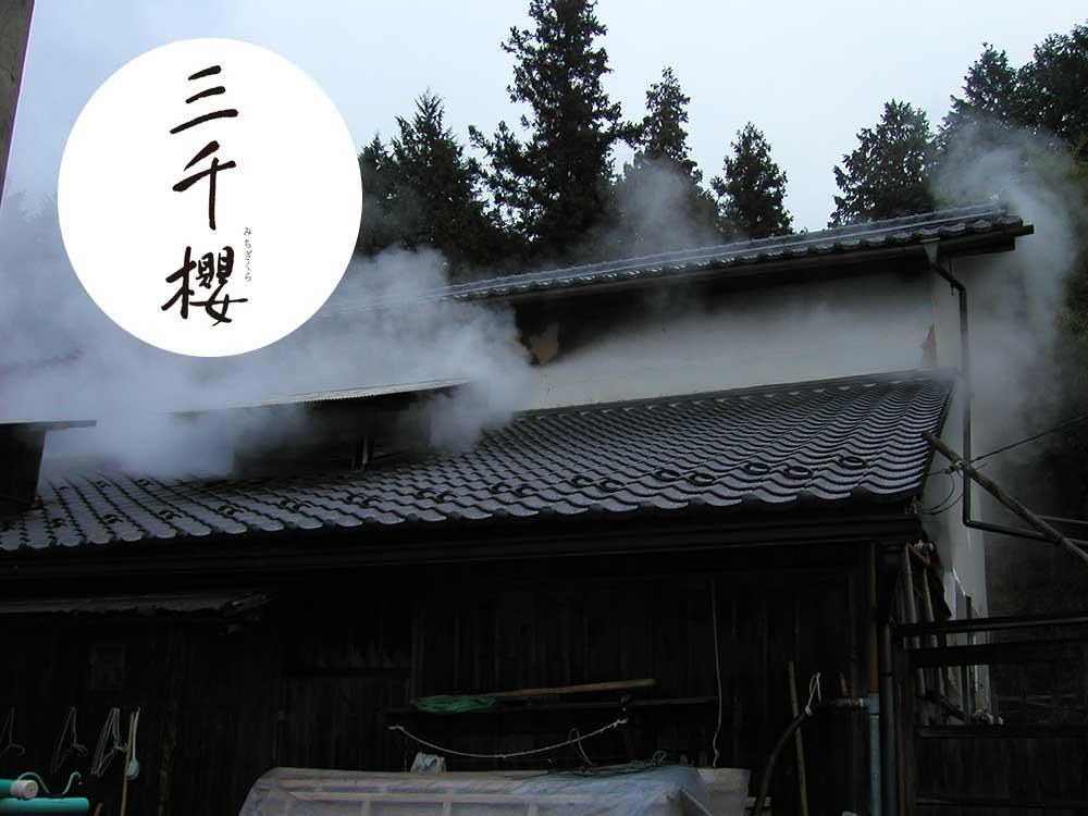 michizakura0319